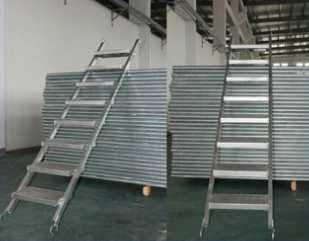 scaffolding ladder with the best price in china
