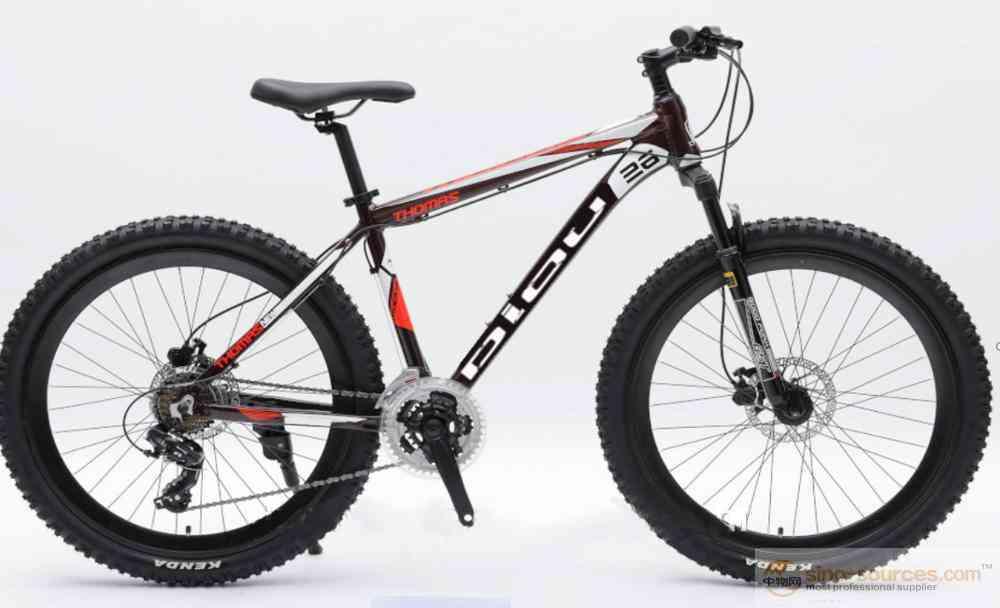 New design beautiful popular mountain bike alloy frame men bicycle