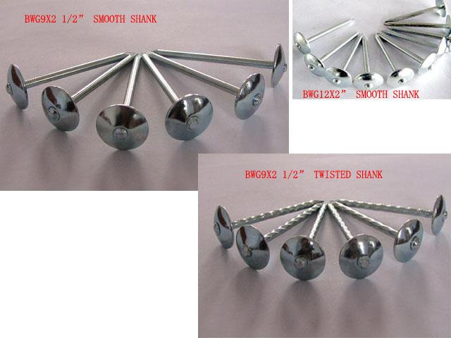 Galvanized Steel Nails