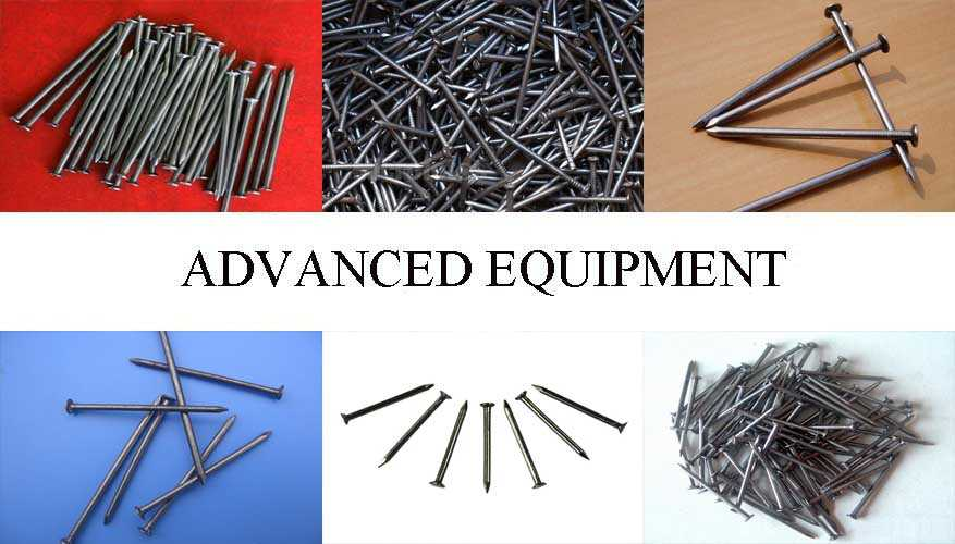 High quality product of Steel Nail