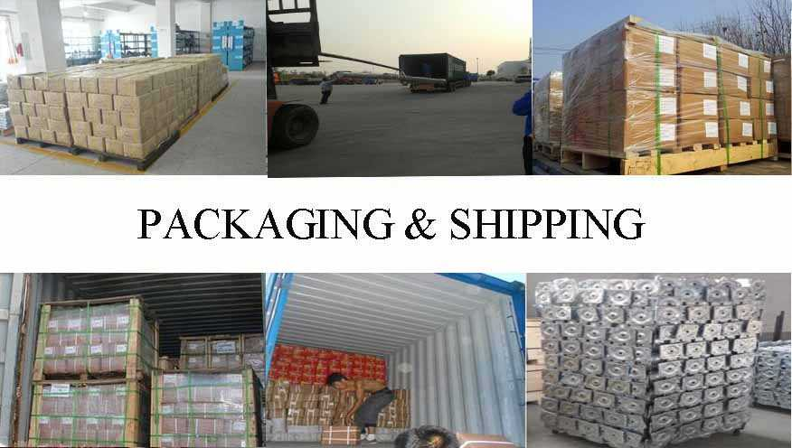 packing&shipping of professional and hot sale self drilling screw supplier in China