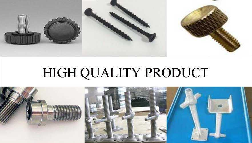 high quality product of GR2 and GR5 Scaffolding Adjustable Screw suppliers