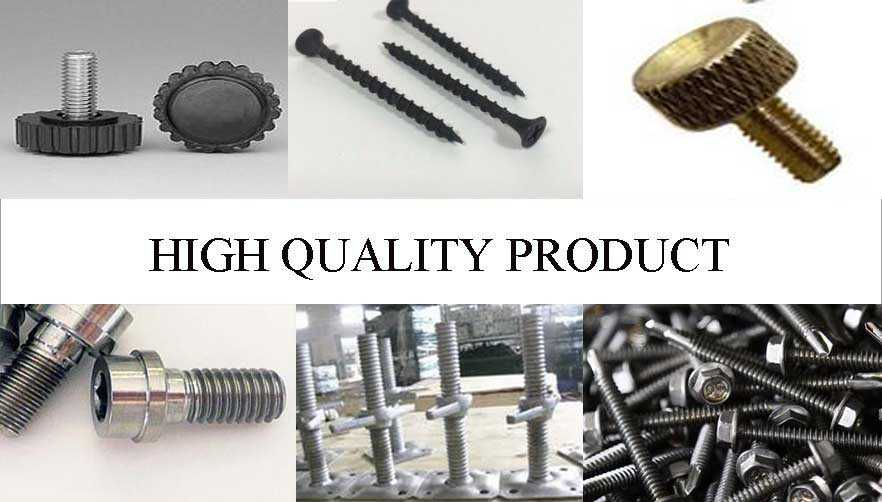 high quality product of steel screw Supplier with factory