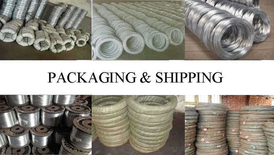 Packaging & Shipping of Electro Galvanized Steel Wire