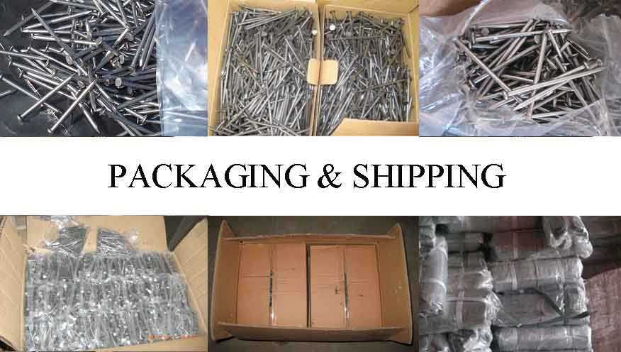 Packaging & Shipping of Galvanized Steel Nails