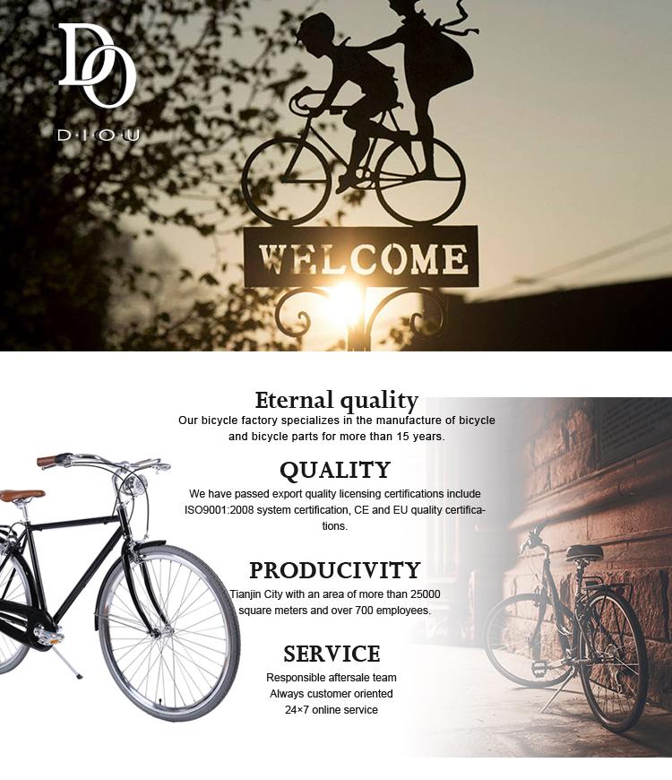 Back Alloy Urban Road Bike