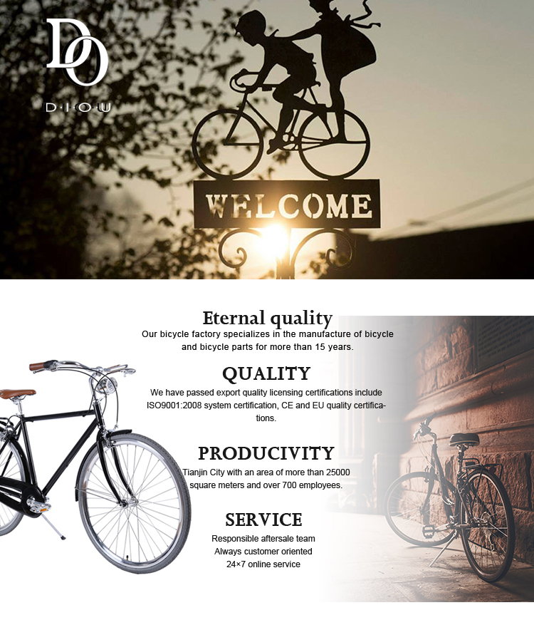 Popular good quality OEM alloy road bike