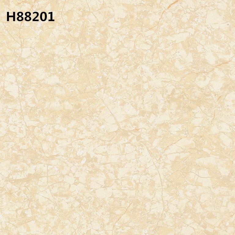 H88201_.jpg