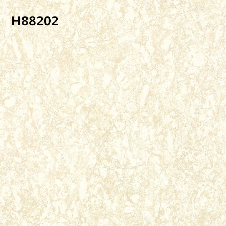 H88202_.jpg